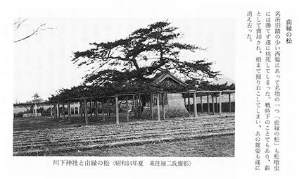 180318_hesoaruki.jpg