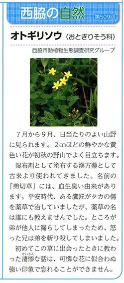 N-nature1608909.jpg