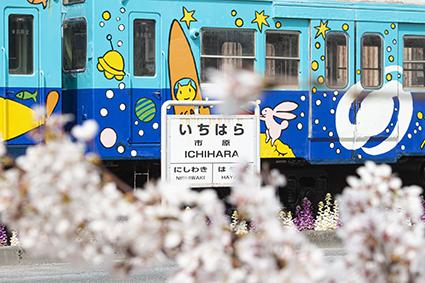 top_ichihara.jpg
