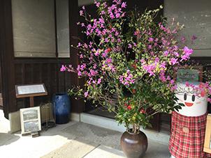 160409Fusai_01.jpg