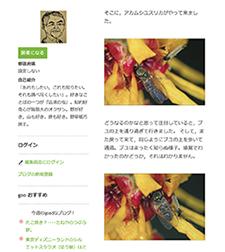 w_konchu_13.jpg