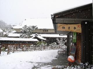 2005_1222kishitei_yuki.JPG