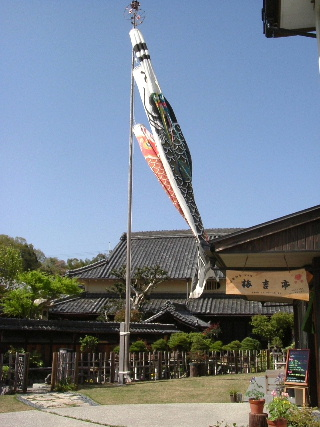 2006_0425kishitei_koinobori.JPG